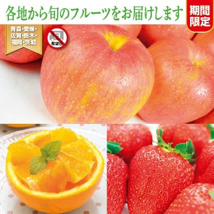 フルーツギフト 〜Spring Version〜