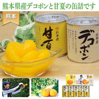 デコポン 甘夏缶詰セット(10缶入)
