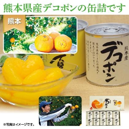 デコポン缶詰(10缶入)