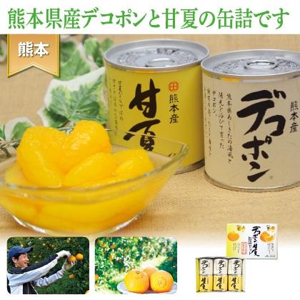 デコポン 甘夏缶詰セット(6缶入)