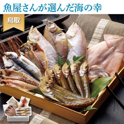 日本海のとれとれ干物セット