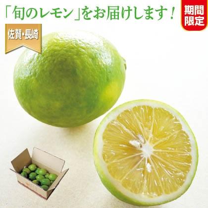 フルーティな酸味 マイヤーレモン 3kg