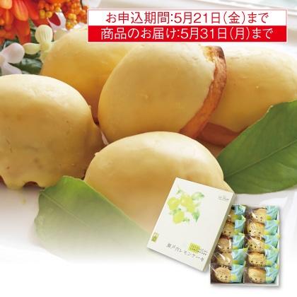 瀬戸内レモンケーキ(10個入)