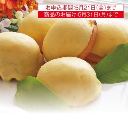 瀬戸内レモンケーキ(15個入)