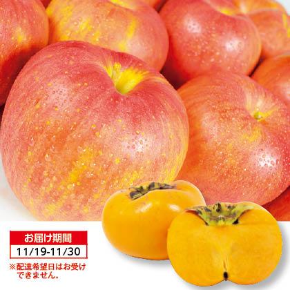 フルーツマルシェ〜サンふじりんごと甘柿〜 【11/19〜11/30配送】