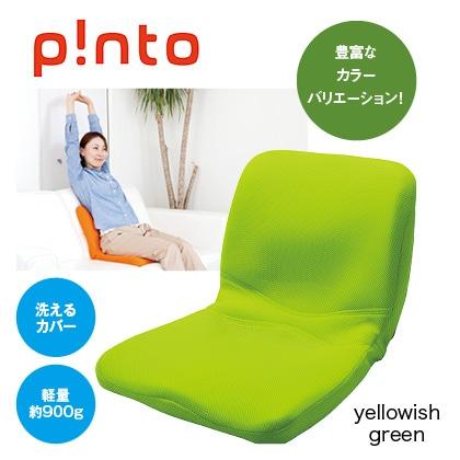 p!nto(yellowish green)