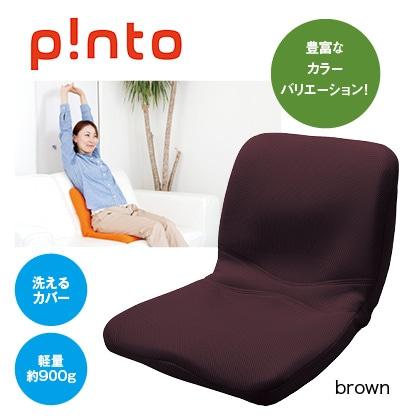 p!nto(brown)