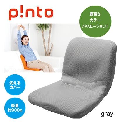 p!nto(gray)