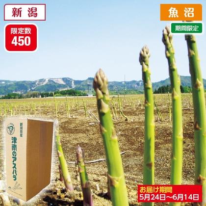 津南産アスパラガス(バラ詰)1.2kg