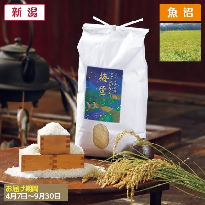 南魚沼産コシヒカリ「梅蛍」精米10kg(2020年産)