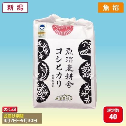 天日干し特別栽培米 魚沼産コシヒカリ2kg(2020年産)