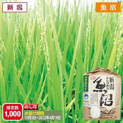 魚沼コシヒカリ特別栽培米 5kg(2021年産)