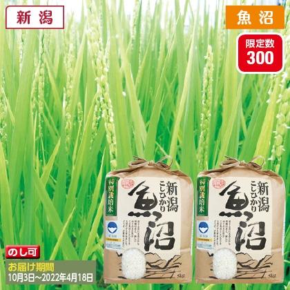 魚沼コシヒカリ特別栽培米 5kg×2(2021年産)