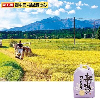 妙高矢代産コシヒカリ 5kg