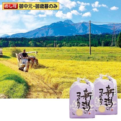 妙高矢代産コシヒカリ 5kg×2