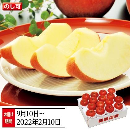 信州りんご特秀5kg