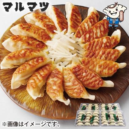 浜松餃子 4パック