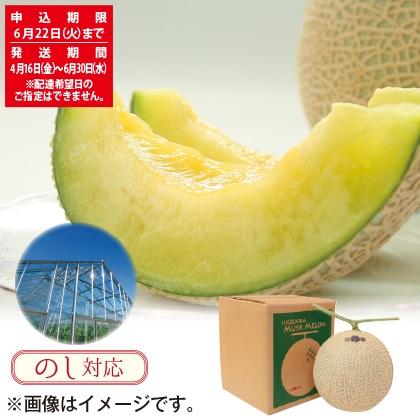静岡県産マスクメロン 1個