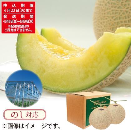 静岡県産マスクメロン 2個