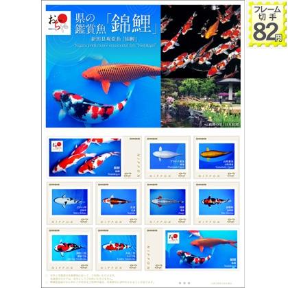 県の鑑賞魚「錦鯉」