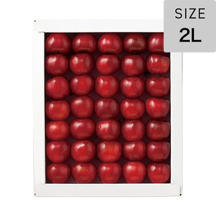 さくらんぼ 紅秀峰300g3L 化粧箱