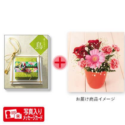 選べるギフト 鳥コースK(2)+フラワーアレンジ 写真入りメッセージカード(有料)込