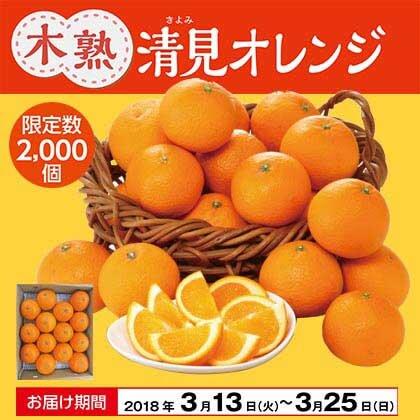 木熟清見オレンジ