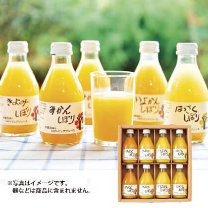 <伊藤農園> 100%ピュアジュース8本セット