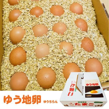 ゆう地卵(20個入)