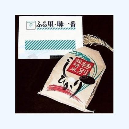 特別栽培米魚沼産コシヒカリ