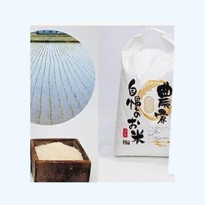 農家こだわりの黒酢コシヒカリ 10kg