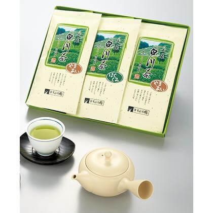 白川茶くつろぎ煎茶 3本