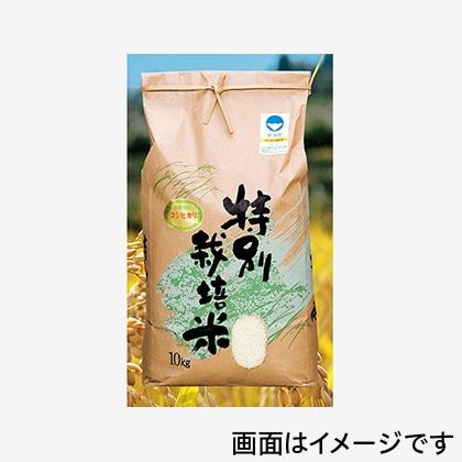 特別栽培米コシヒカリ 10kg