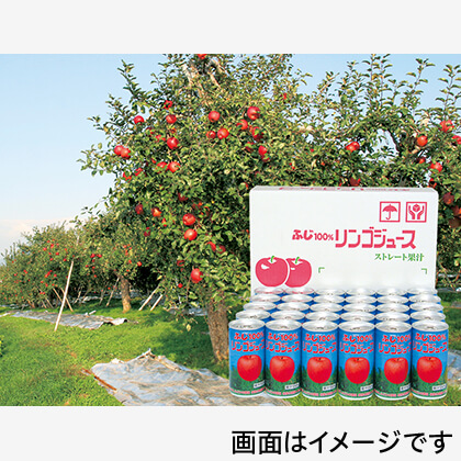 ふじ100%りんごジュース 30缶