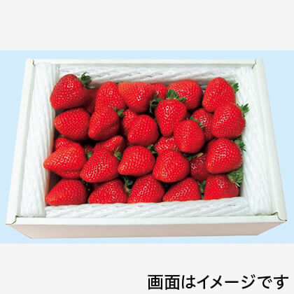真っ赤な大粒いちご(箱入)
