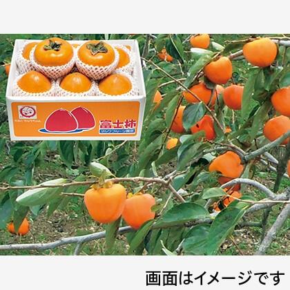 富士柿 2.5kg