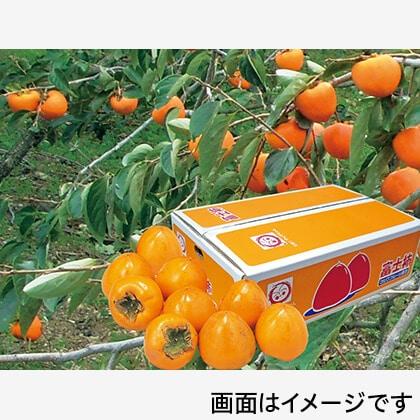 富士柿 4.5kg