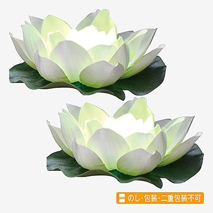 光る蓮の花(ホワイト)