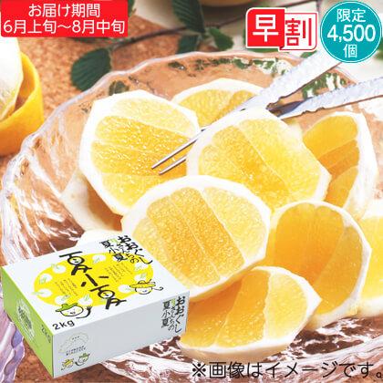 夏小夏(ナツコナツ)2kg