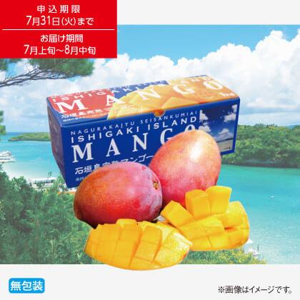 石垣島完熟マンゴー1kg