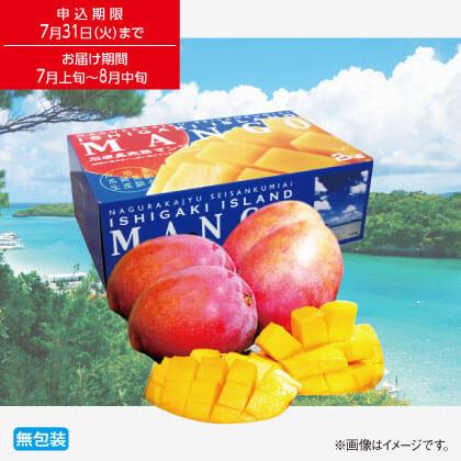 石垣島完熟マンゴー2kg