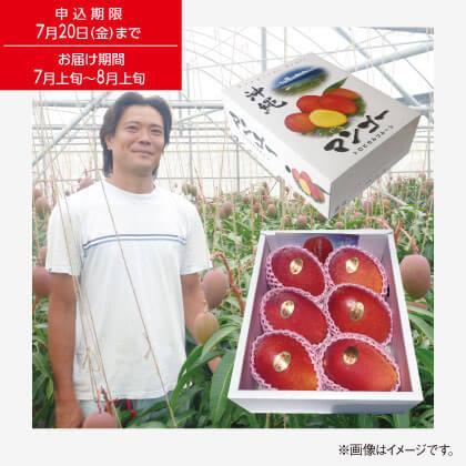 沖縄県産 マンゴー2kg