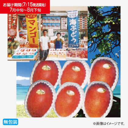 沖縄県産マンゴー 2kg