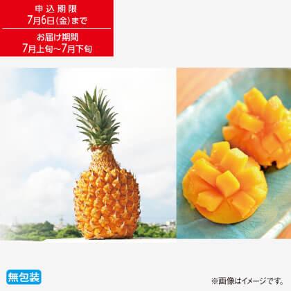 沖縄県産 ボゴールパイン&マンゴー