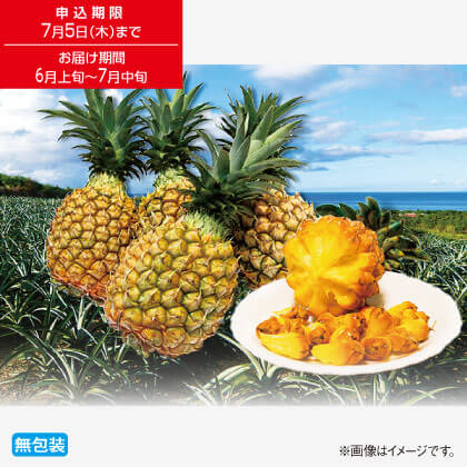 沖縄県産手でちぎれるボゴールパイン1.4kg