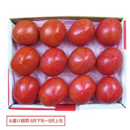 長野・静岡 アメーラトマト