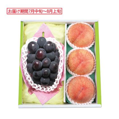 ピオーネと山梨 御坂の水蜜桃