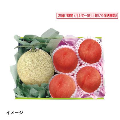 静岡県・愛知県産 マスクメロン&山梨県産 甲斐の水蜜桃