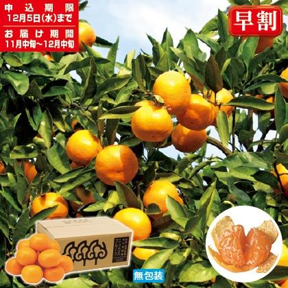 段々畑の贈り物 西宇和産おひさまみかん 2.5kg