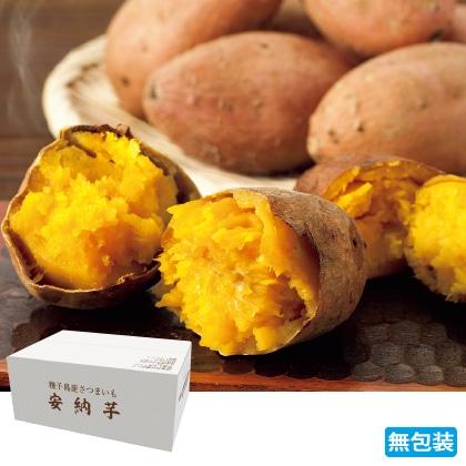 種子島産 安納芋